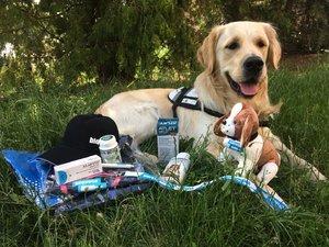 Bioveta byla sponzorem Rekondičního pobytu pro držitele vodicích a asistenčních psů