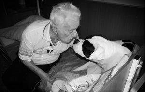 Canisterapie - práce, která má smysl